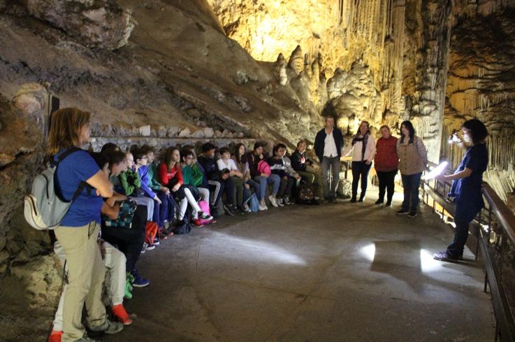 """""""Bicheando"""" en la Cueva de Nerja"""